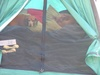 Dogs_in_tent
